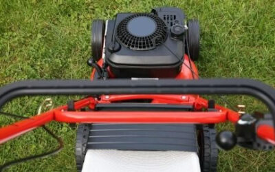 10 Best Lawn Mower Engine In 2021   Review and Buyer's Guide