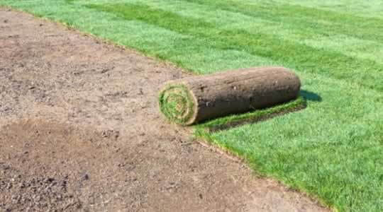 Laying Sod to Start New Lawn ; Image