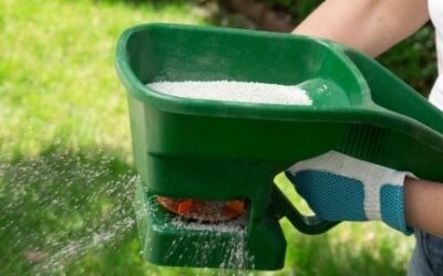 Best Way of Fertilizing Lawn: Lawn Fertilizing Tips