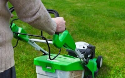 How Often to Mow Lawn: Guide to Avoid Mowing Mistakes