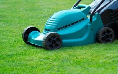 Types of Lawn Mowers: Complete Lawn Mower Buying Guide