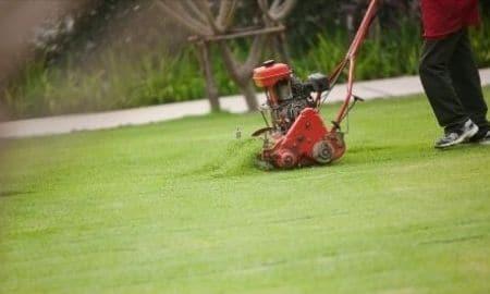 mowing in winter
