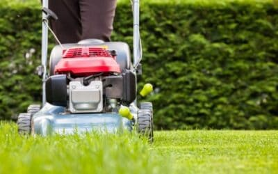 What Height Should I Cut My Grass? | Fix Your Measurement