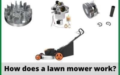 How Does a Lawn Mower Work? Read A Details