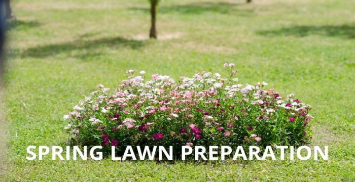 Spring Lawn Preparation | Easy Step By Step Guide