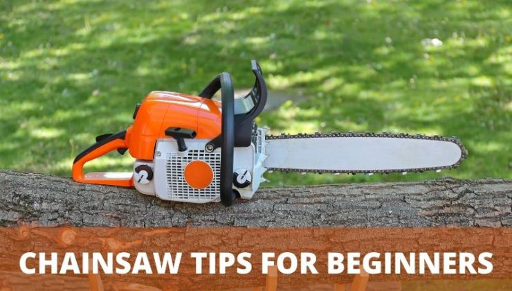 Chainsaw Tips for Beginners | Step By Step Beginners Guide